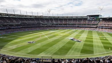 Photo of 3 Best Cricket Stadiums in the Cricket World