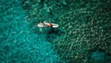 Photo of Bodysurfing 101: A Beginner's Guide on How to Bodysurf Like a Pro
