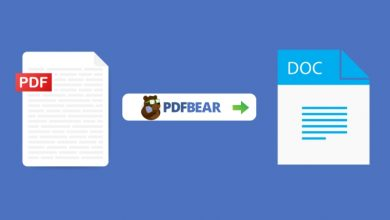 Photo of Need to Convert? Check Out PDFBear's Simple Word to PDF Converter