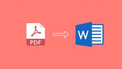Photo of Top 3 PDF to Word Converters You Should Use