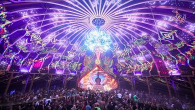 Photo of An Insight Into Ozora Festival