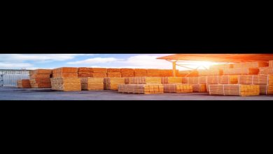 Photo of Wooden Pallet Supplier Malaysia