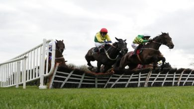 Photo of Horse Racing: What's The Difference Between Hurdles And Fences?