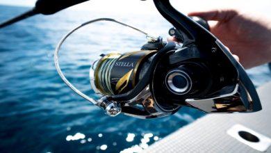Photo of Big Game Fishing Reels- Maintenance Tips for Enhanced Performance