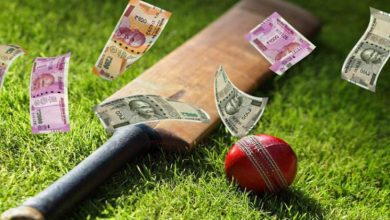 Photo of Do you bet on cricket? Here's what you need to know